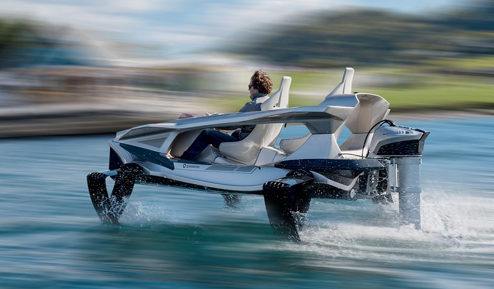 Q2S watertoys Quadrofoil